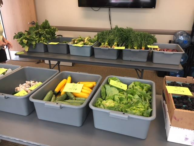 Fresh produce from Boise Farmers Mobile Market for Idaho PCA & Terry Reilly Health Services FVRx program (Boise, ID)
